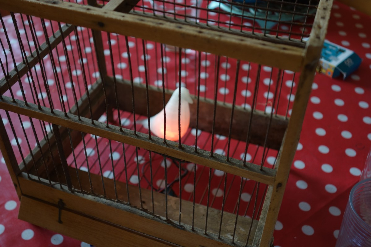 Eames Bird, éclairé dans sa cage