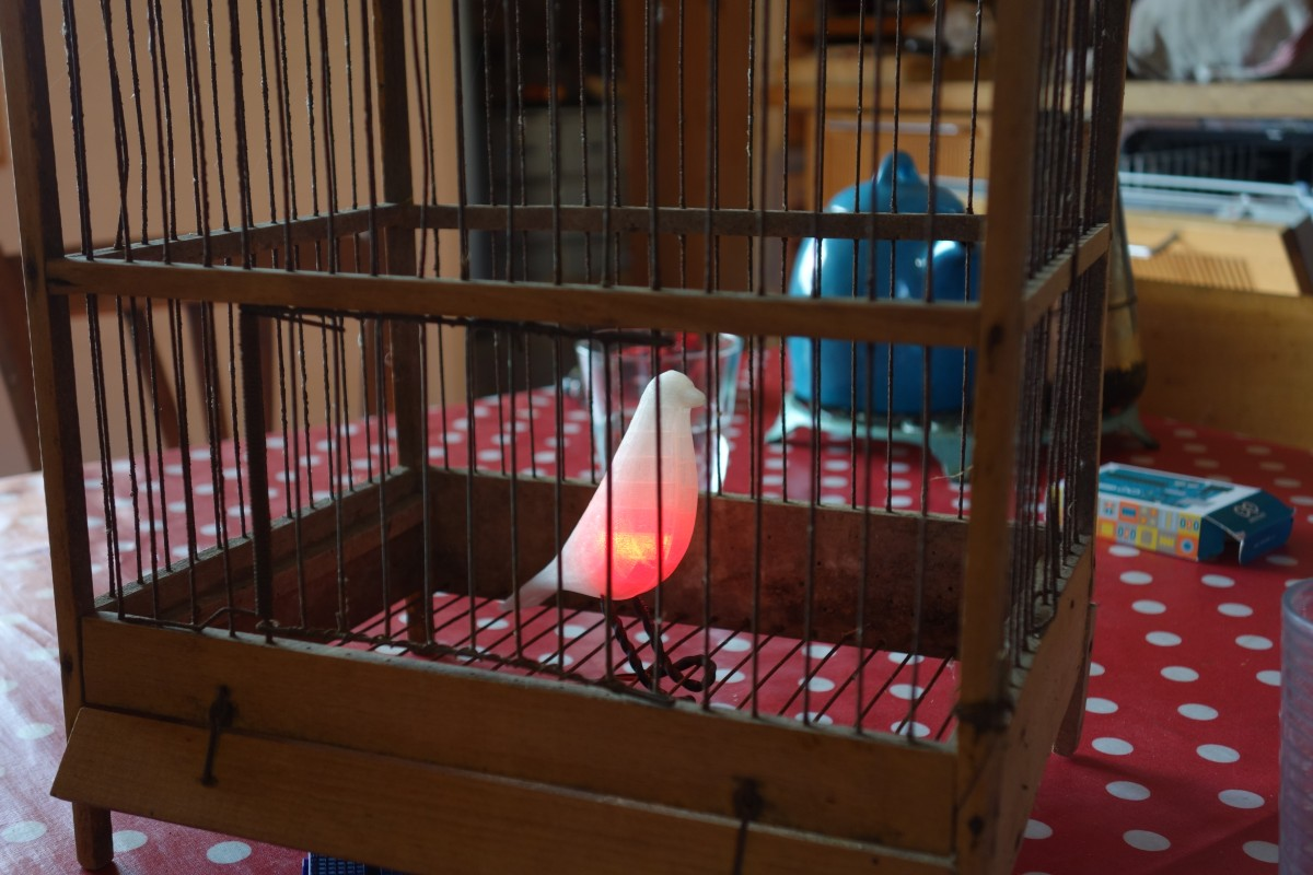 Eames Bird, éclairé dans sa cage 3